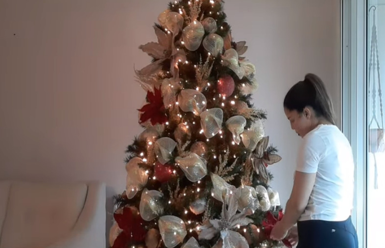 Tips Para Tu Árbol De Navidad